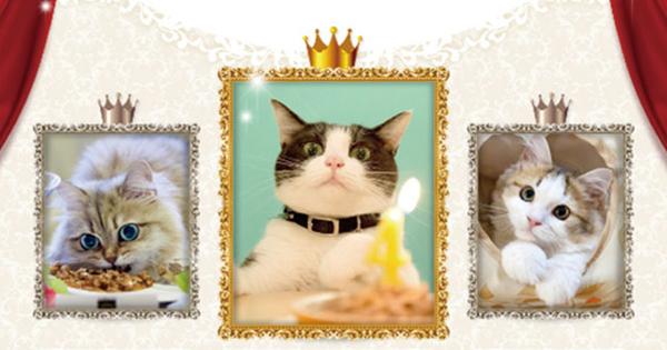 飼い主の親心をくすぐる、ペット関連業界のプロモーション(前編)