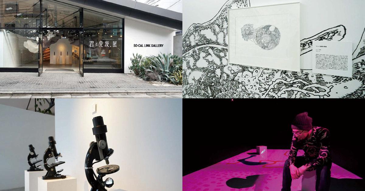 明治、免疫をアートにした展示会 2日間で4000人が来場