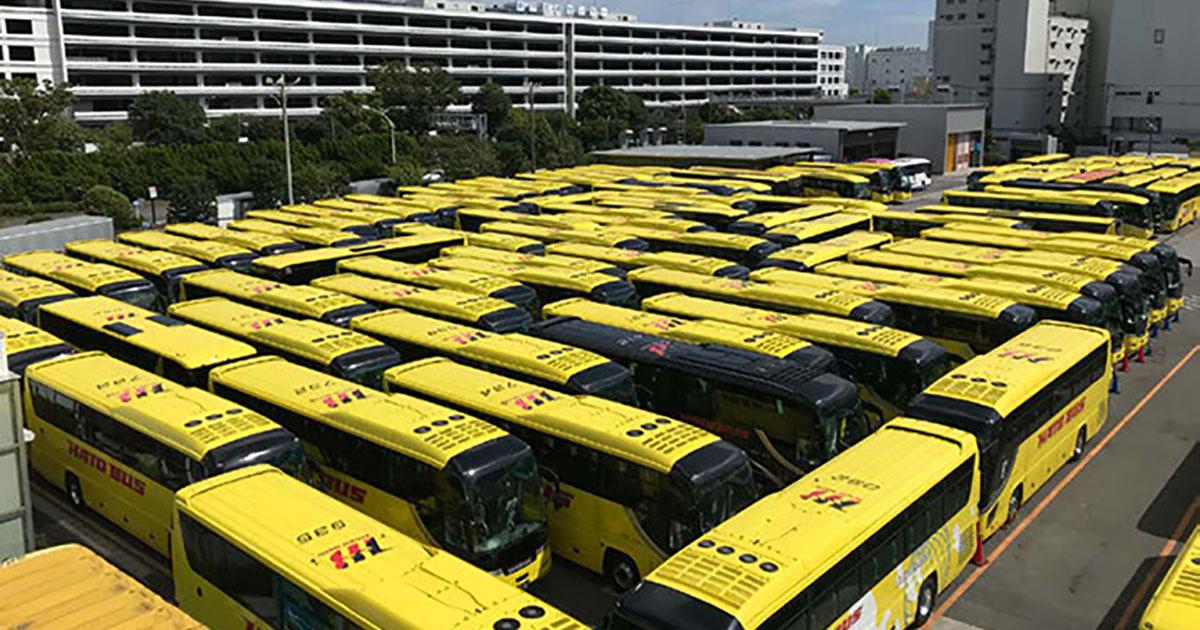 はとバス、4連休で巨大迷路体験実施 計344人が参加