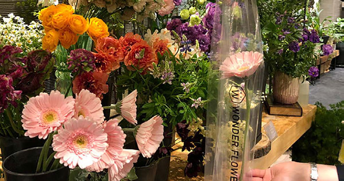 毎日お花がもらえるサブスクで花屋に通う新習慣をつくる