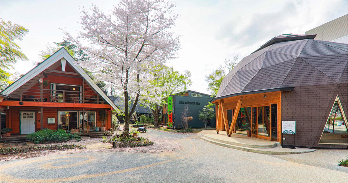 「木の家」の展示場がリニューアル 発見と共創の場を目指す