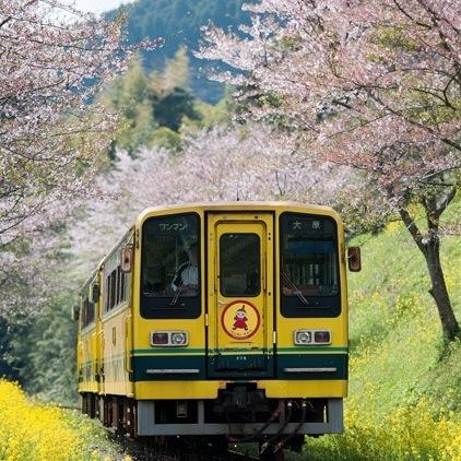 廃止寸前から立て直した千葉県・いすみ鉄道 ローカル線をどのようにしてブランド化する?