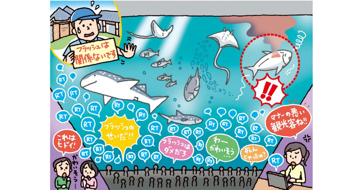 Twitterのデマ拡散、「よくある質問」明示でリスク管理する方法